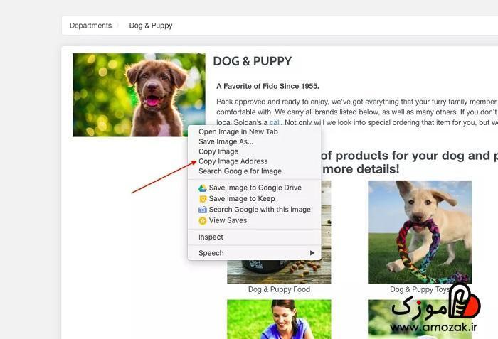 جستجوی عکس در گوگل با گوشی اندروید